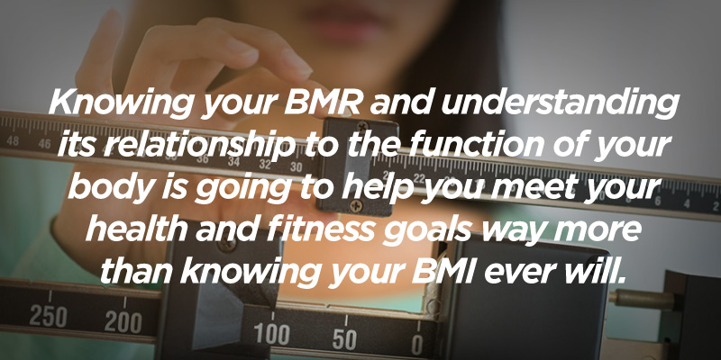 your basal metabolic rate helps you understand how to lose or gain weight