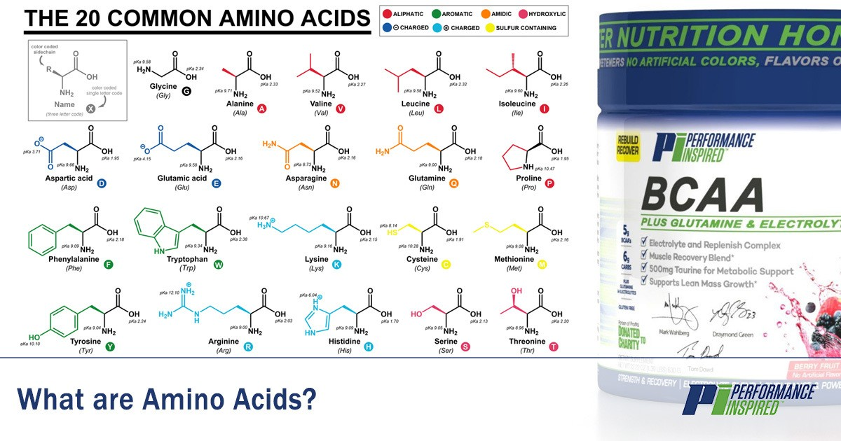 PI Nutrition: Definition of Amino Acids