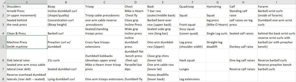 exercise tracker spreadsheet