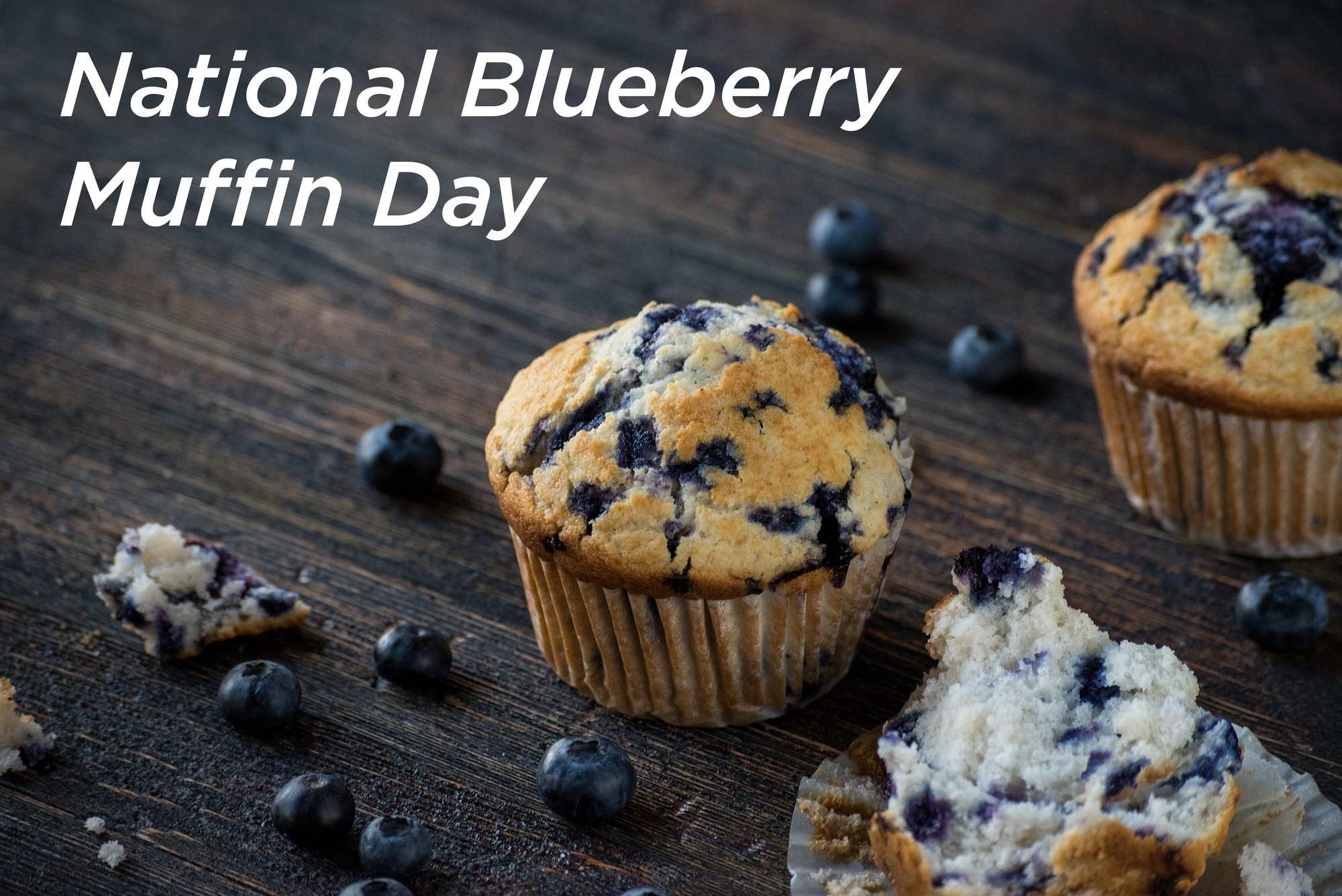 National-Blueberry-Muffin-Day-blog-image